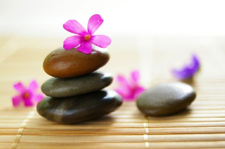 small pink flower on top of smooth stones photo