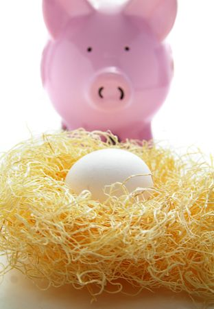 nestegg: piggy bank with an egg in a nest (nest-egg)