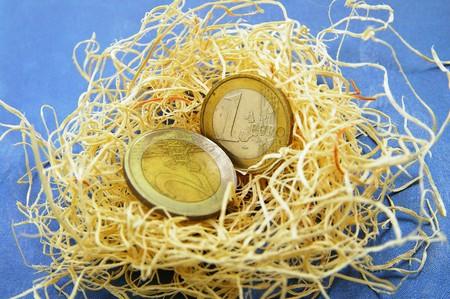 Euro coins in a nest (nest-egg concept) Фото со стока