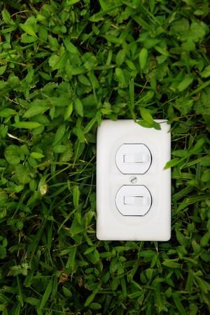 plain light switch over green grass