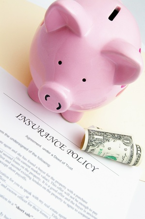 insurance policy and piggy bank with dollar