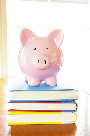 piggy bank on top of a stack of books photo