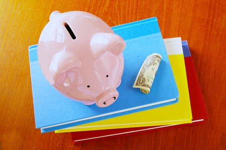 scholarship: piggy bank on book stack, with dollar