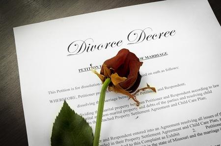 legal document: Documento del decreto de divorcio con una rosa muerta