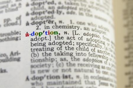 definicion: Primer plano de la definición de la adopción en letras de colores Foto de archivo