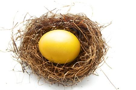 nestegg: golden egg in a bird Stock Photo