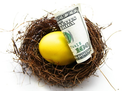 nestegg: golden egg and cash in a nest, on white