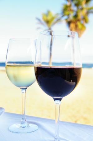 杯红色和白葡萄酒在一个热带设置