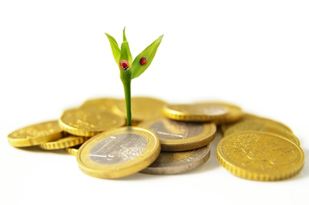 nestegg: new growth from Euro coins - financial concept