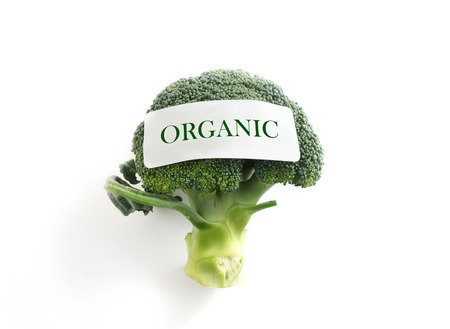 pesticide free: Fresh broccoli on white with Organic label