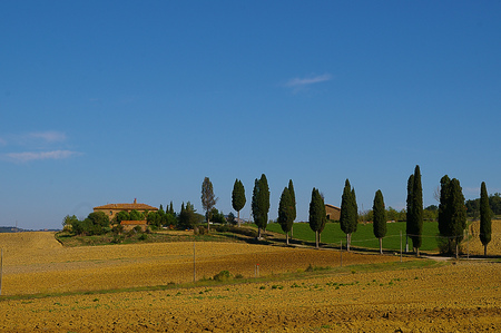 Rural estate in Tuscany Italy under blue sky