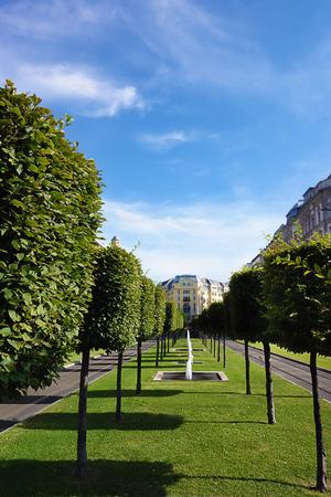 Tree lined esplanade in Budapest Hungary Stock Photo
