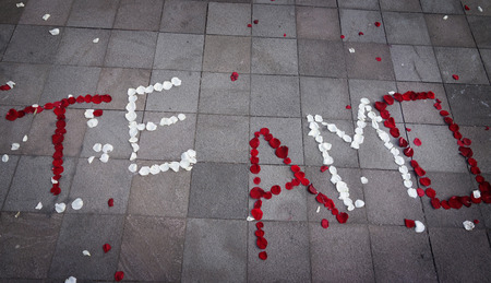 Te Amo (Spanish for I Love You) spelled out in rose petals