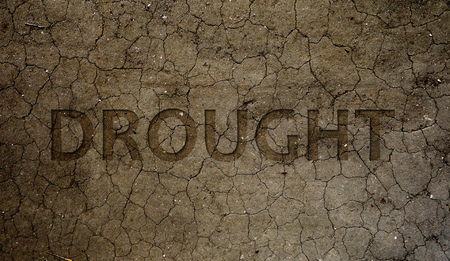Drought text over dry and cracked brown dirt                        Stock Photo