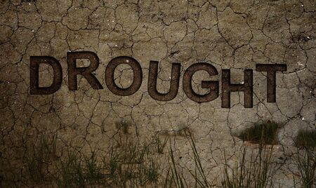 Dought text in dry cracked dirt with dying grass -- Climate change concept