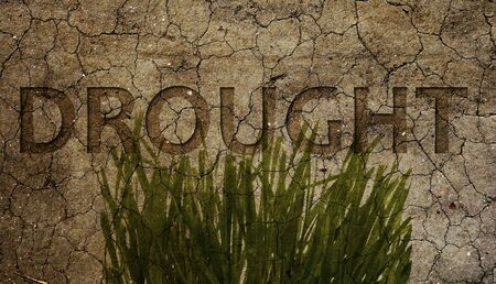 Drought text and dying grass over dry and cracked brown dirt