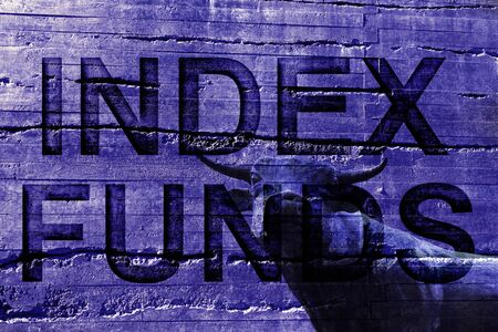 Index Funds text on textured background with a bull-- stock market investing concept