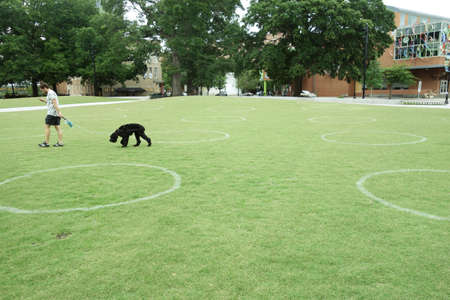 RALEIGH,NC/USA - 6-05-2020: A person walks his dog in Moore Square park in downtown Raleigh, NC. White circles are painted in the grass to encourage social distancing during the Coronavirus pandemic. 新闻类图片