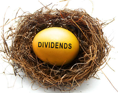 Golden egg in a nest with Dividends text