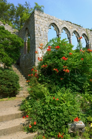 shrubs: Ancient stairs and archs with flowering shrubs