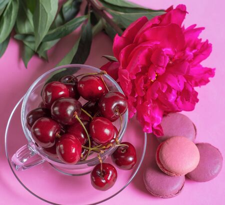 Cherries in the glass cup with macaroons and peony on pink Stock Photo