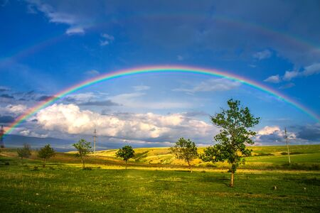 Beautiful landscape with rainbow, green grass field and trees Stock Photo