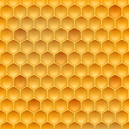 Stock vector illustration realistic honeycomb texture. Honey, beeswax EPS 10
