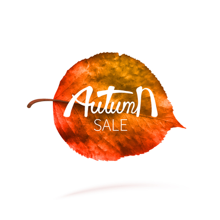 Stock vector illustration sale Autumn falling leaves. Autumnal foliage fall and poplar leaf flying in wind motion blur. Autumn design. Templates for placards, banners, flyers, presentations, reports 免版税图像 - 115000368