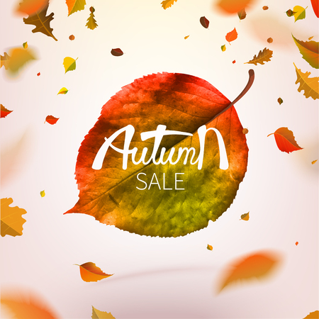 Stock vector illustration sale Autumn falling leaves. Autumnal foliage fall and poplar leaf flying in wind motion blur. Autumn design. Templates for placards, banners, flyers, presentations, reports 矢量图像