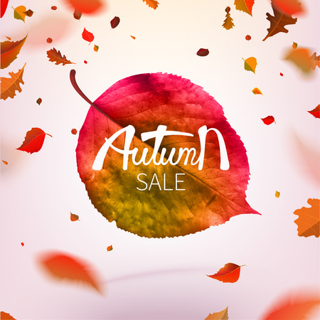 Stock vector illustration sale Autumn falling leaves. Autumnal foliage fall and poplar leaf flying in wind motion blur. Autumn design. Templates for placards, banners, flyers, presentations, reports Ilustração