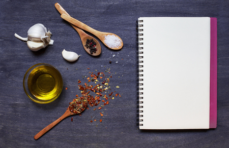 salt and pepper: Copy book with condiment (pepper, garlic and salt) and olive oil on dark background