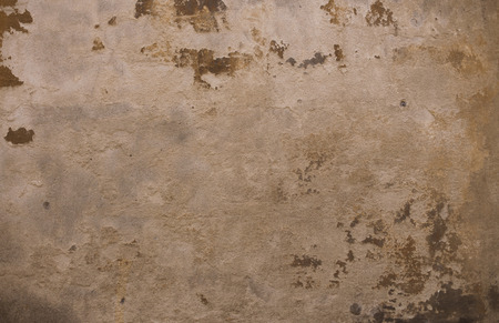 mustiness: old textured background from stone