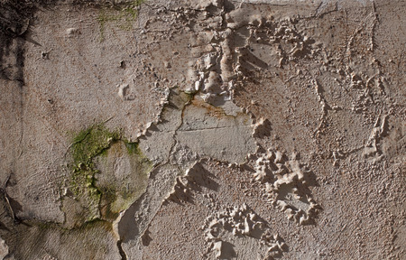 mustiness: Antique street wall from stone in Arezzo, Italy