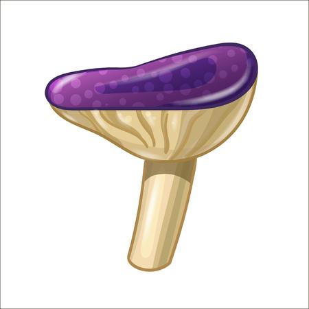 Cartoon coloured mushroom isolated on white background.