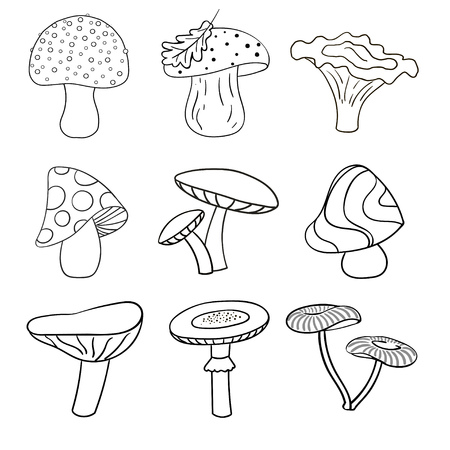 Set of beautiful cute cartoon contoured mushrooms isolated on white background.
