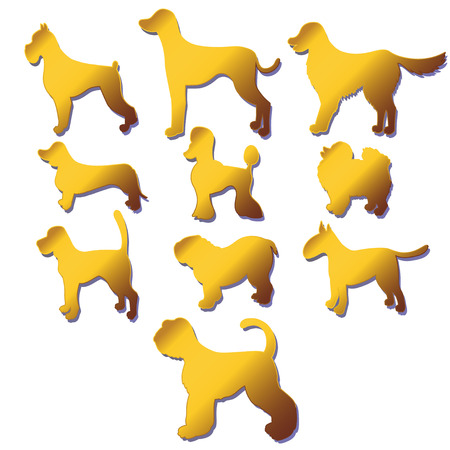 Set of silhouettes cartoon gold dog different breeds isolated on white background. illustration Illustration