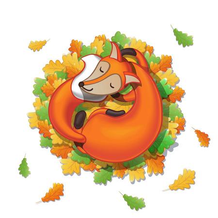 Cute cartoon fox sleeps on oak leaves. Good night! Isolated on white background. Vector illustration.