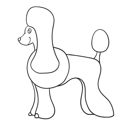 Contour poodle isolated on white background. Funny dog. Vector illustration.
