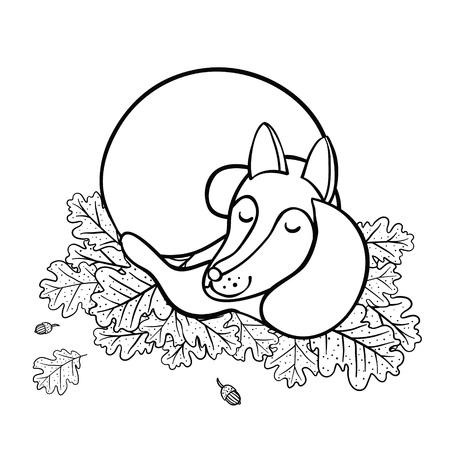 Cute cartoon sleeping fox on oak leaves. Good night!