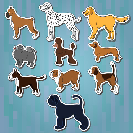 Set of cartoon dog breeds on white stickers with shadows