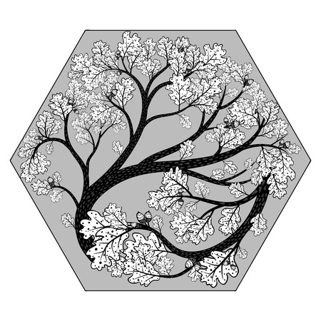 Beautiful oak tree in hexahedron. Vector monochrome illustration. Vettoriali