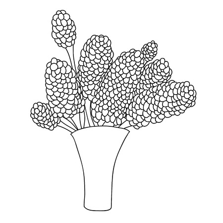Cute cartoon flowers in vase. Lilac. Isolated on white background. Vector illustration.  Can be used for coloring books.
