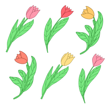 Cartoon cute colored tulips. Vector illustration isolated on white background. Illustration