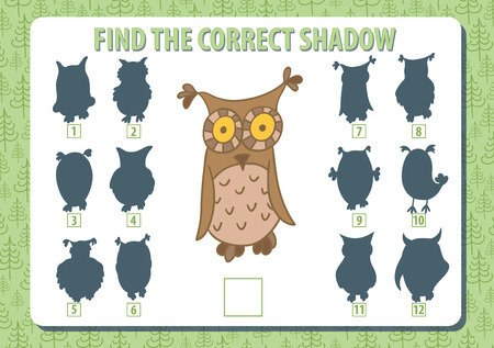 Owl. Find the correct shadow. Game. Horizontal album a4 page. Vector illustration.