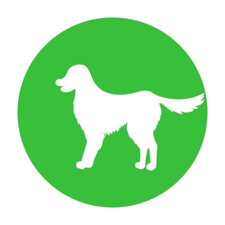 Dog friendly sign. White silhouette of dog on green circle. Vector. Breed labrador, golden retriever