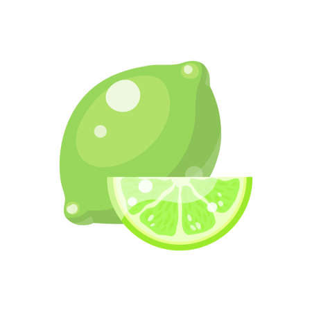 Lime fruit in cartoon style depicting whole and half of fresh juicy citruses isolated on white background. Vector illustration.
