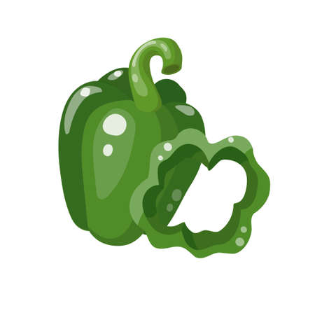 Green bell pepper. Whole and sliced. Vector illustration isolated on white background