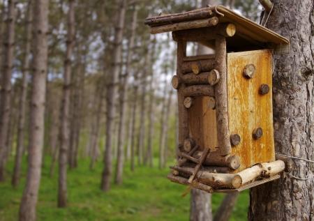 bird feeder in a wooden house in the garden