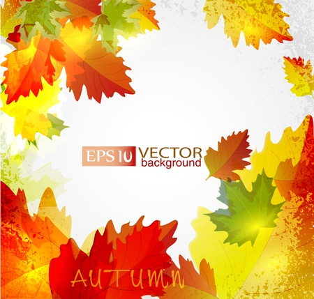 Vector abstract background with autumn leaves Illustration