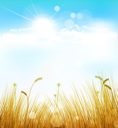 vector autumn background with grass and blue sky